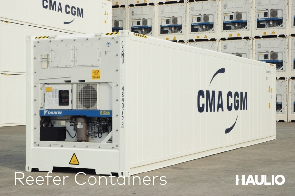 Reefer/Refrigerated Containers