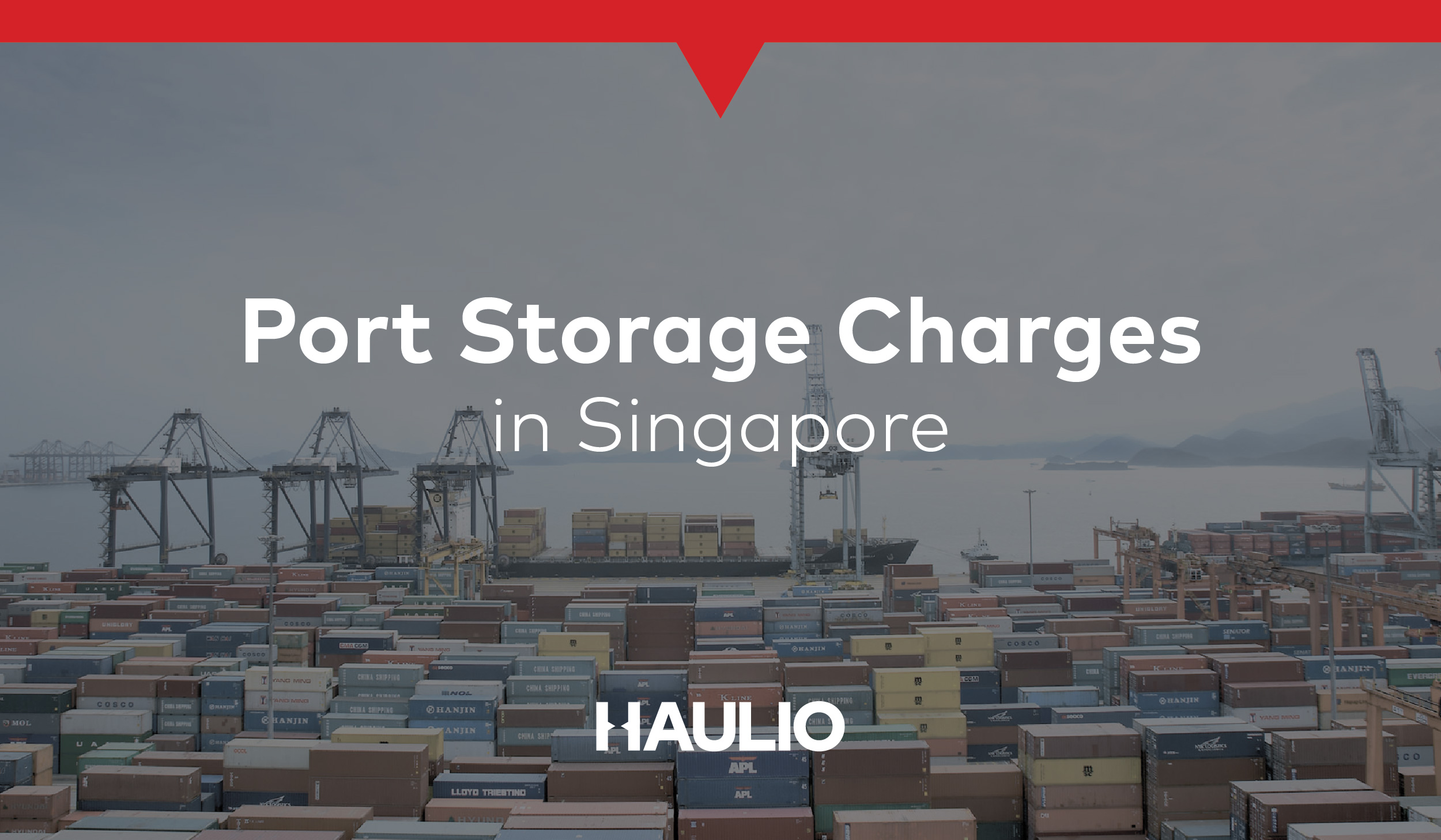 What are PSA Port Storage Charges for Containers in Singapore?