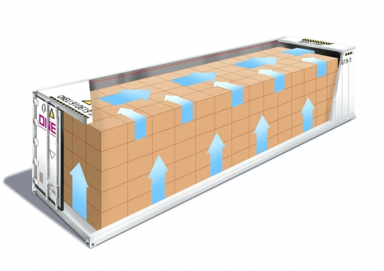 Airflow in a Reefer for Frozen Cargo