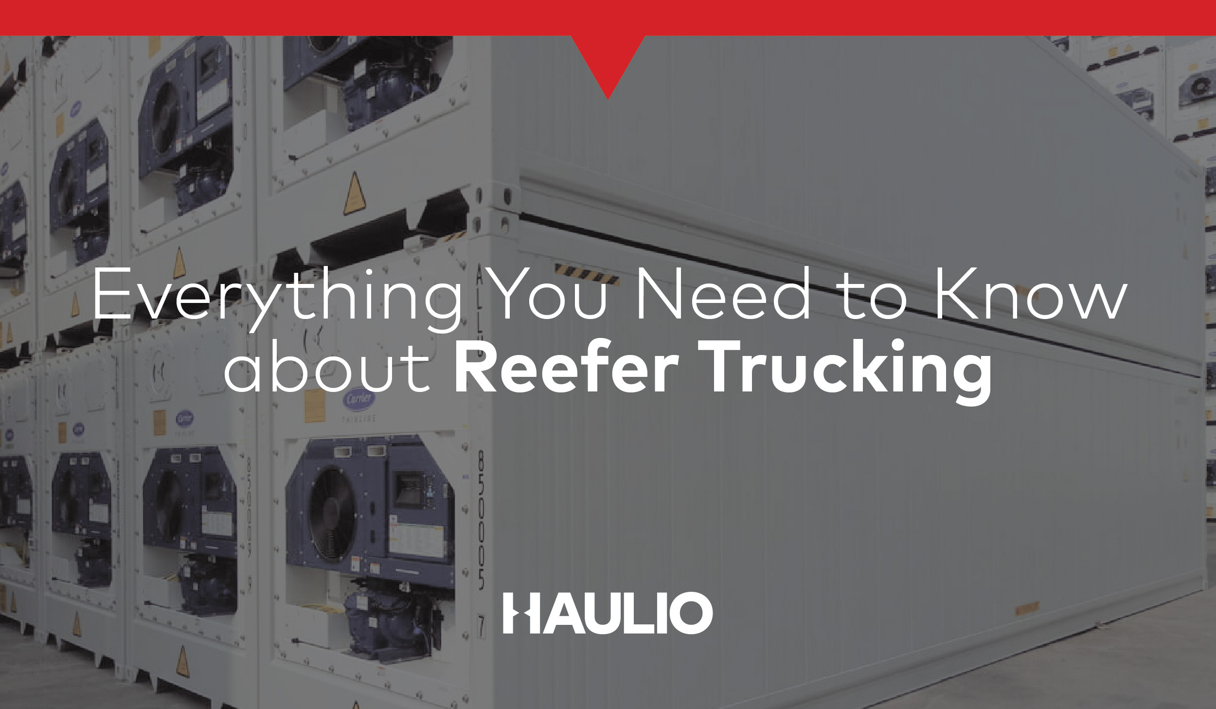 Everything You Need to Know about Reefer Trucking