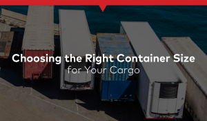 Choosing the Right Container Size for Your Cargo